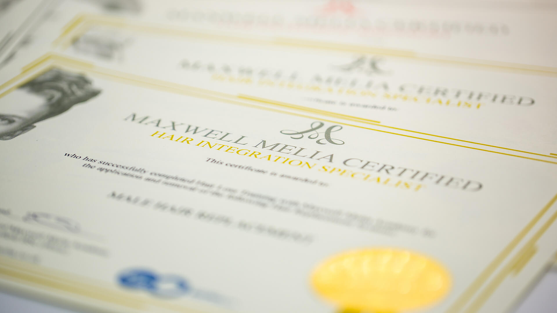 Hair Extension Qualification Training Course Certificates