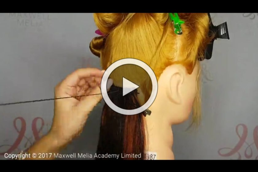 Online Hair Extension Training 2